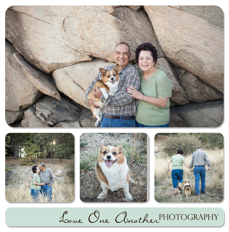family with corgi