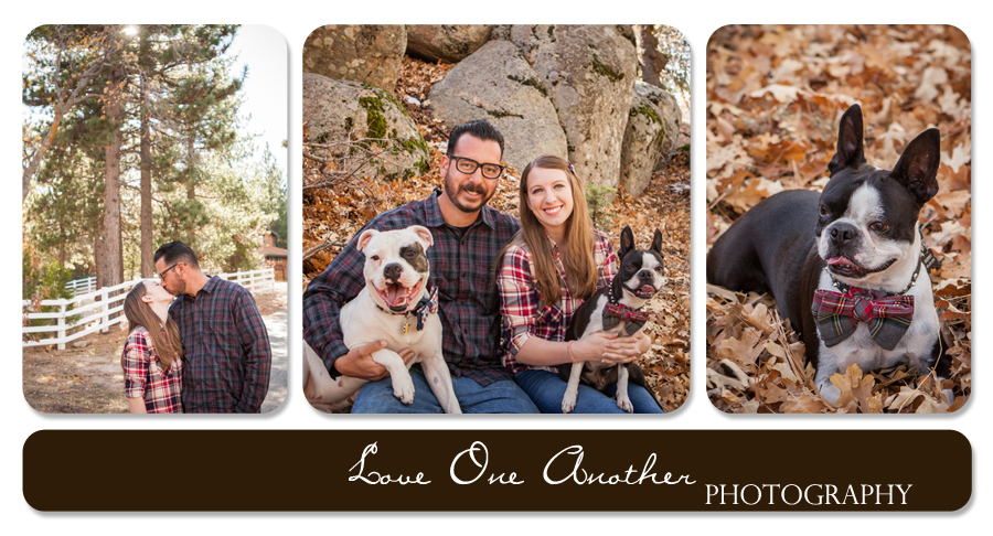 mountain family pictures