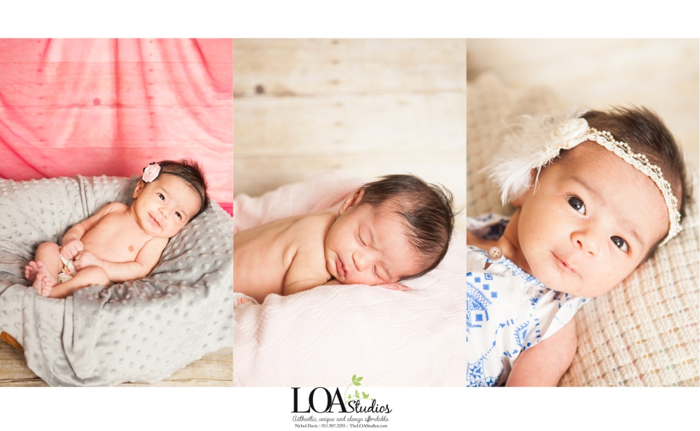 newborn photography baby girl pictures