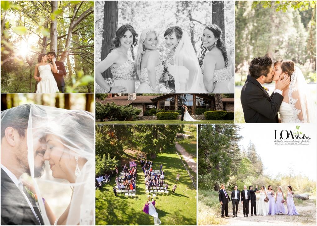 Wedding in crestline rustic mountain wedding