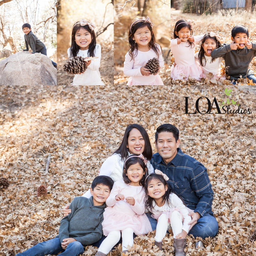 family photographer in green valley lake
