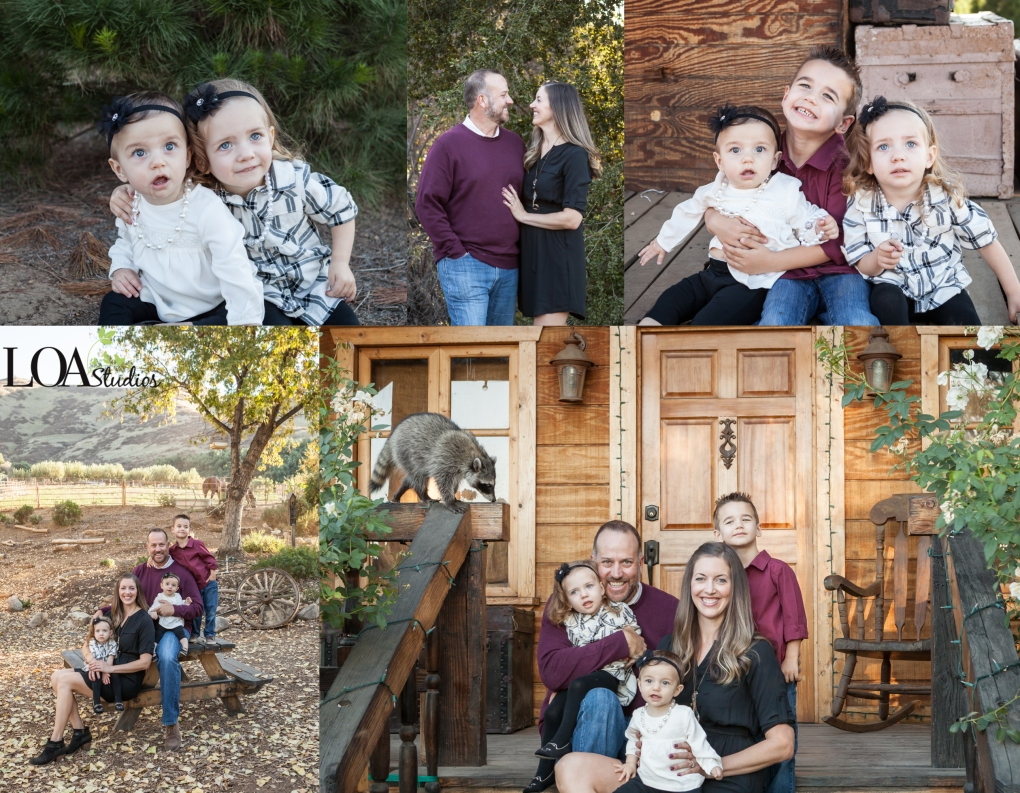 family photographer at greenspot farms