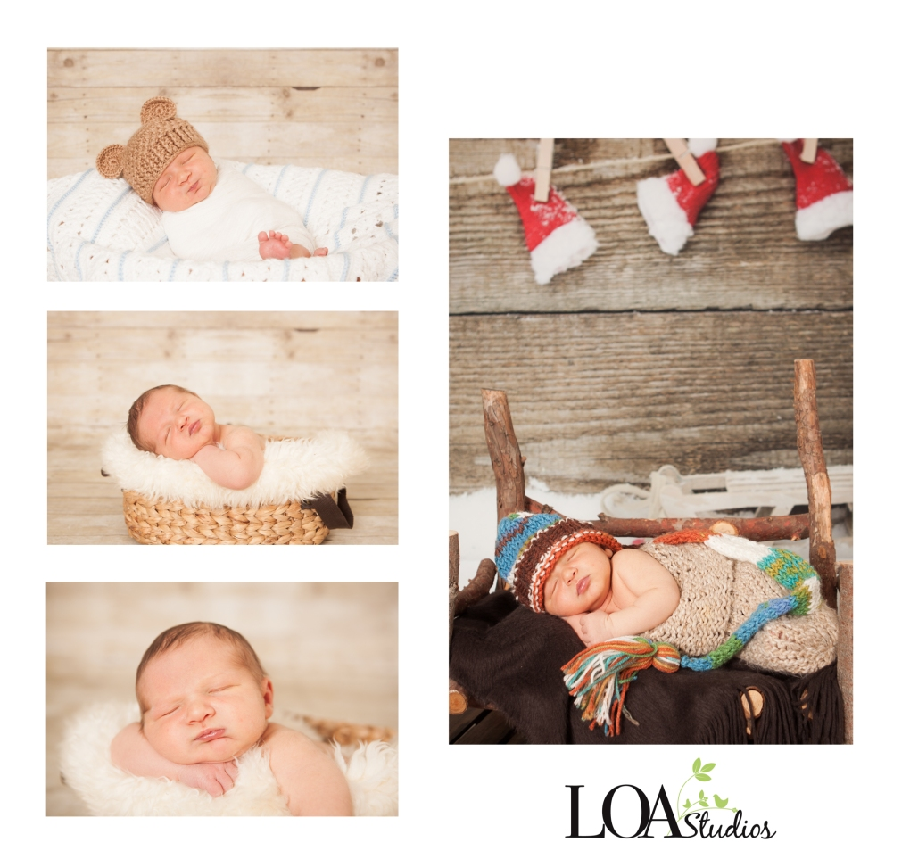 running springs newborn photographer