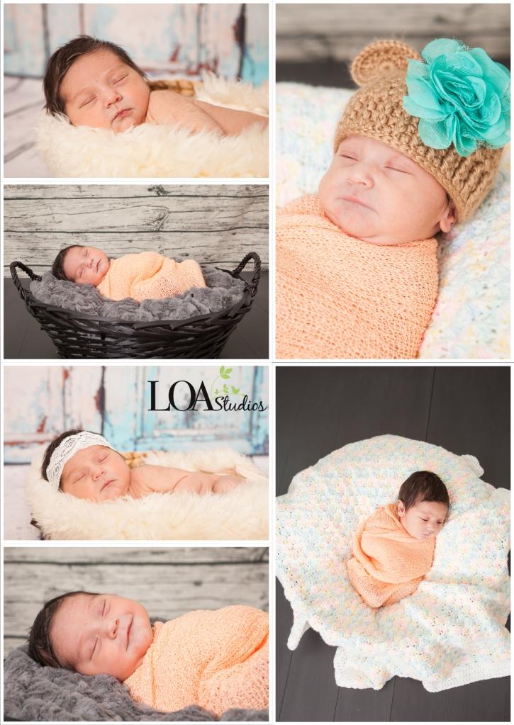 sweet babies newborn photographer