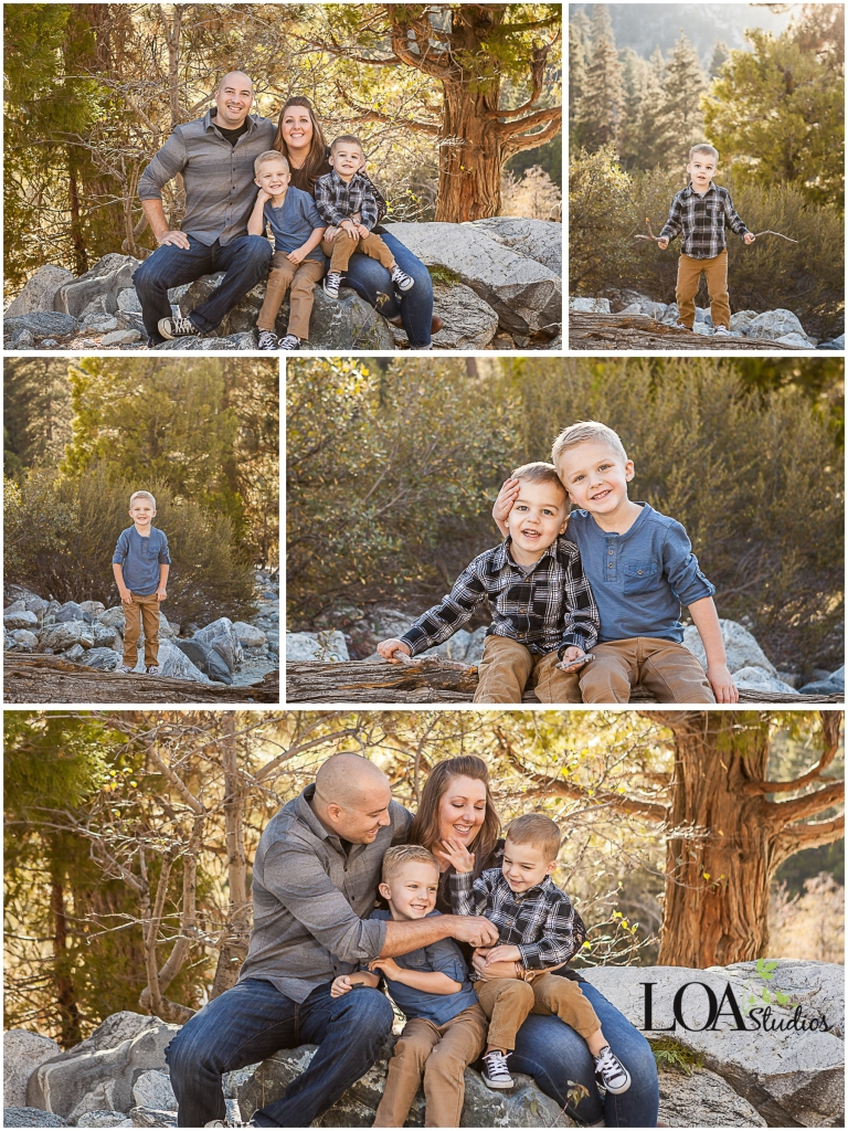 pictures in forest falls